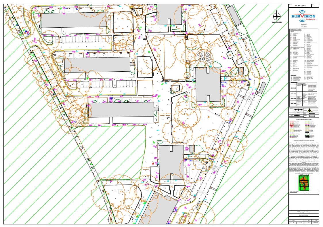 example topographical survey